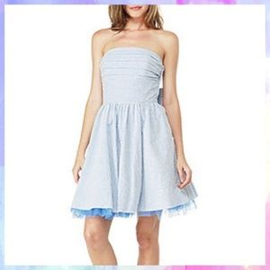 Betsey Johnson Seersucker Petticoat Dress 10